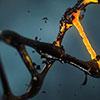 AcceGen MicroRNA Agomir/Antagomir Synthesis Service