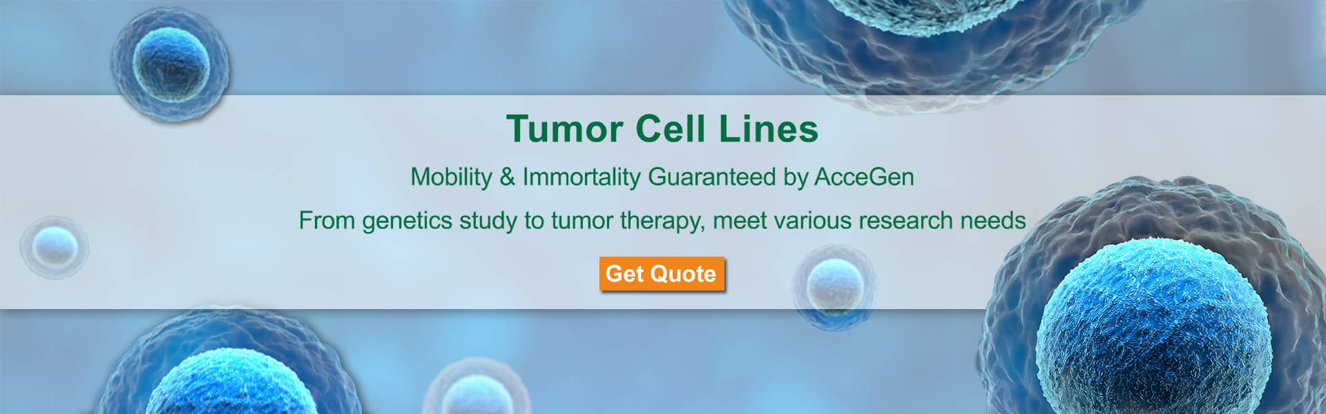 AcceGen Tumor Cell Lines